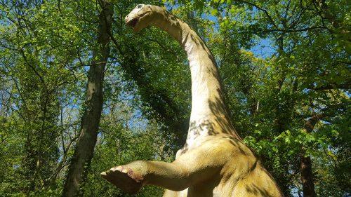 The Apatosaurus: surprisingly camp